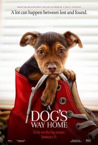 A Dog&s Way Home  เพื่อนรักผจญภัยสี่ร้อยไมล์