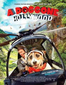 A Doggone Hollywood  หมาในฮอลลีวู้ด