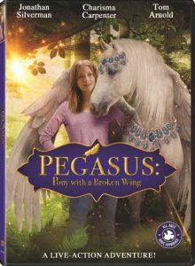 Pegasus Pony with a Broken Wing  ม้าเพกาซัสที่มีปีกหัก