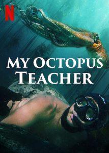 My Octopus Teacher  บทเรียนจากปลาหมึก